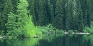 Сохраним жемчужину Приморского хребта – озеро Угловое