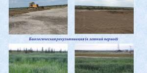 Технические проекты рекультивации земель сапропелем