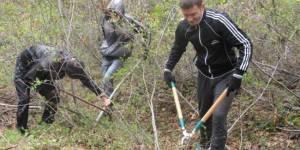 ББТ-мониторинг. Тропа - общественный контроль за лесом