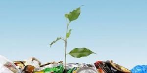 Новый формат экологических субботников вместе с МММЦ