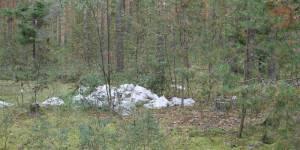 Активисты ОНФ обнаружили вблизи Кирова свалки с опасными отходами