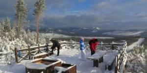 Скандинавская ходьба на защите городских лесных массивов