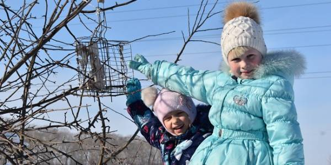 INaturalist объединяет бёрдвотчеров Сибири