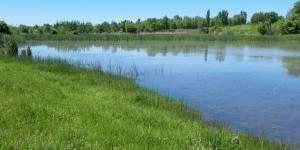 Очистка водоема от заиления и производство удобрений из извлекаемых илов