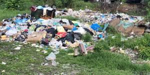 Более 80% жителей региона не видят улучшений от «мусорной реформы»