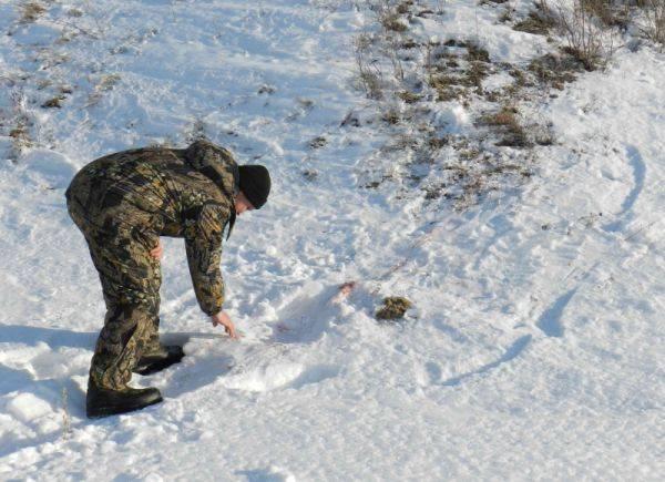 В Алтайском крае стало больше случаев браконьерства