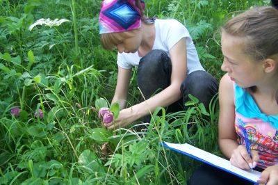 Школьники активно участвуют в сохранении дикой природы Алтая