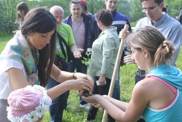 Парк природотерапии автор Анна Вититина