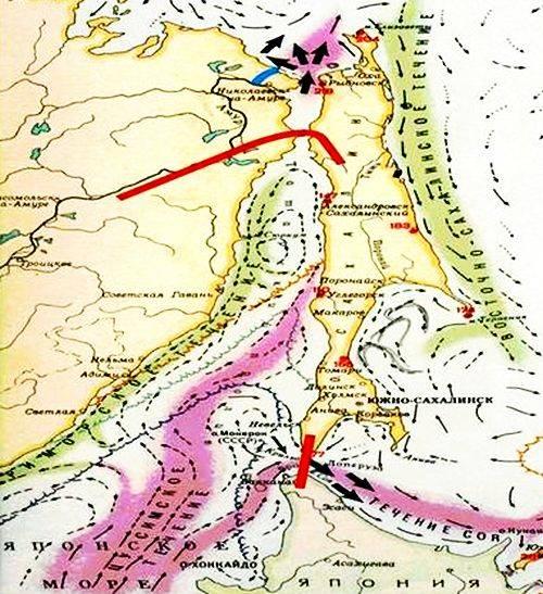 Схема переноса русла Амура (синим цветом) и строительства дамбы (красным цветом)