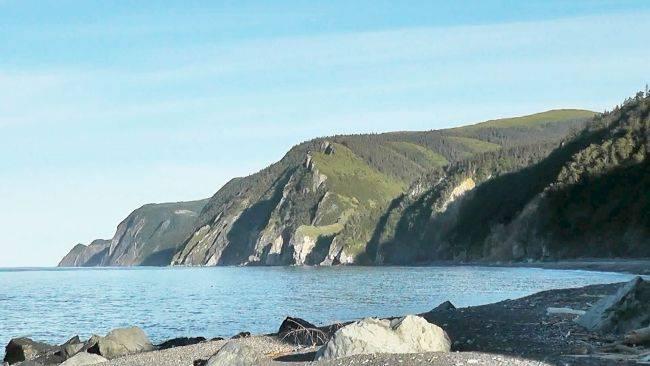 Шантарские острова стали национальным парком. Фото Александра Ничикова.