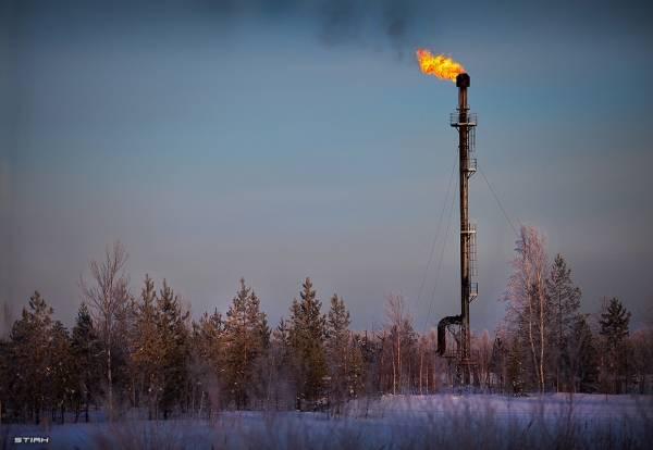 Зеленая революция: Экологический демпинг госкомпаний