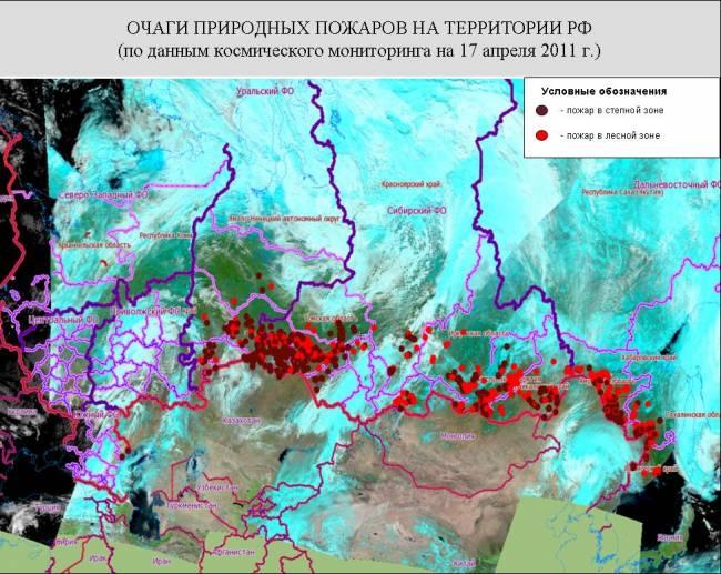 В лесах Сибири горят почти 800 га