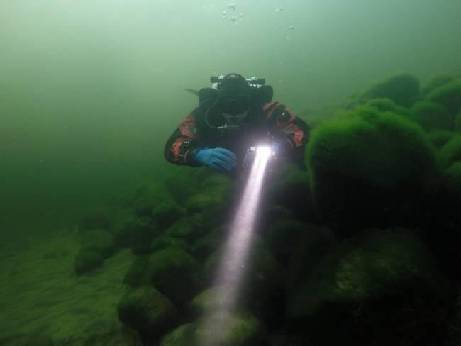 Дайверы отметили, что на дне Телецкого озера почти нет мусора