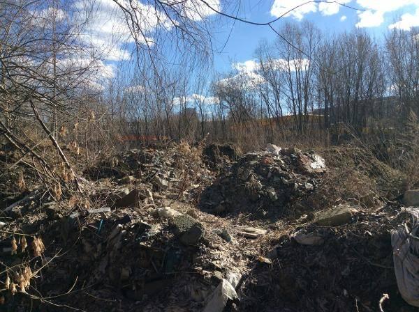 12 млн рублей составил ущерб от свалки у реки Сетунь