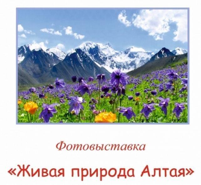 """В Горно-Алтайске открылась фотовыставка """"Живая природа Алтая"""""""