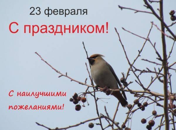«Защищать природу - значит защищать Родину»