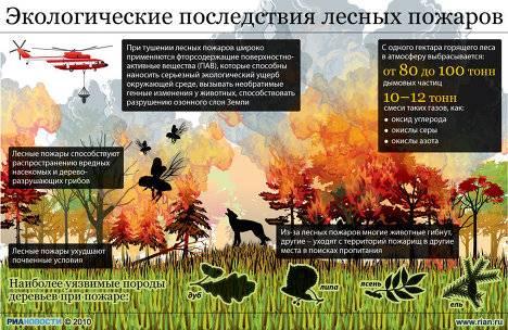В Сибири наступило лето