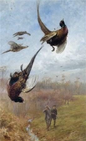 Аргументы защитников весенней охоты несостоятельны и экологически невежественны