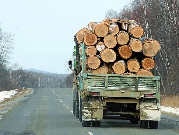 Кому и зачем нужны фанфары - А.Лебедев, Заслуженный эколог РФ