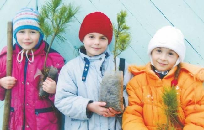 Конкурс экологических проектов в Томской области