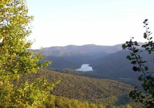 Гидрологическая роль лесных экосистем Южного Сихотэ-Алиня