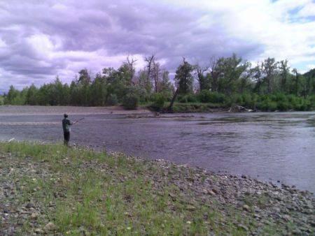 Экспресс-оценка эколого-экономической эффективности ГЭС на реке Шилка