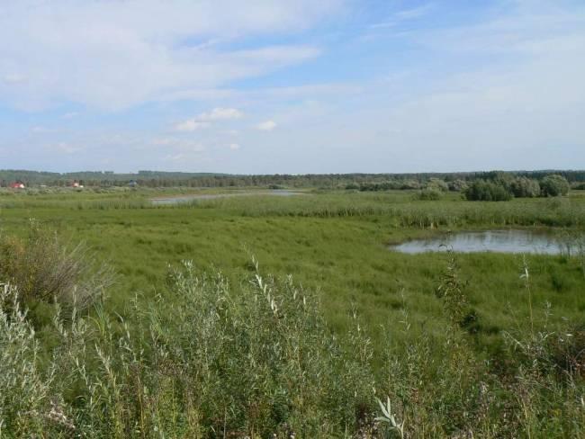 Коларовские озёра