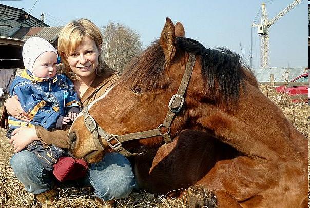 Экология души или история спасения шестерых лошадей