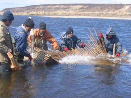 Кому мешает традиционное рыболовство?