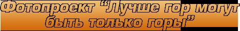 Приглашаем в экспедиции на Алтай