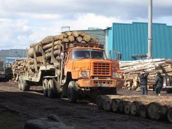 Дальний Восток: путь к лесной сертификации