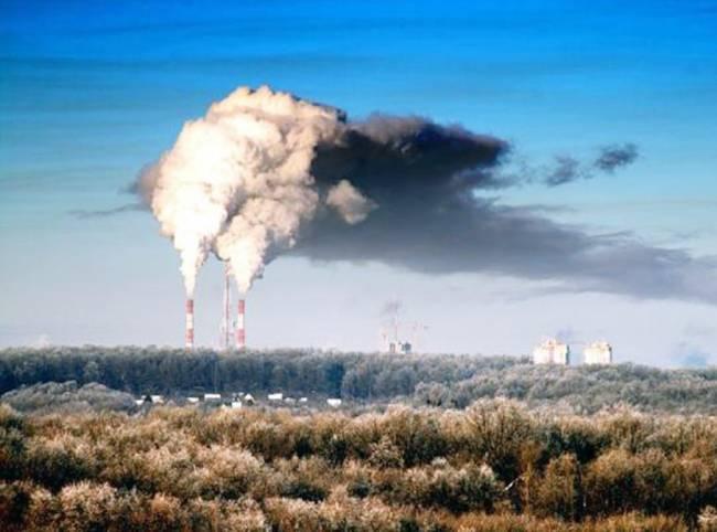Экологические проблемы обсудят в Петербурге специалисты из разных стран