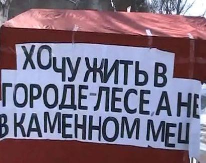 Три дня в защиту лесов Академгородка