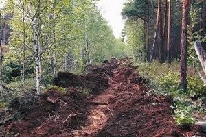Российская борьба с лесными пожарами в зеркале Урала