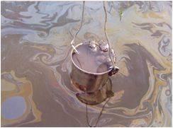 Нефтепроводы и малые реки (на примере реки Балта в Новосибирской области)