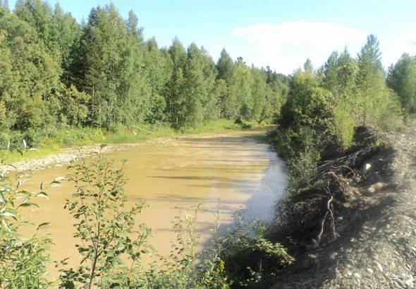 О золотых реках Нижнего Приангарья