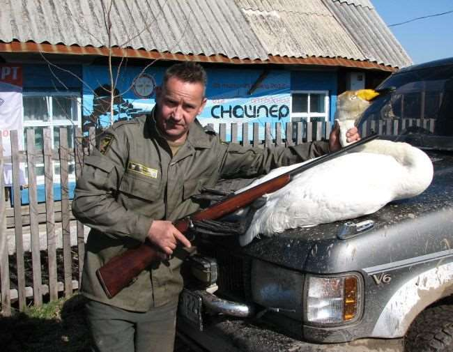 Хищные птицы западной сибири