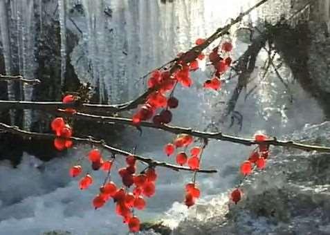 Осень на Енисее (сибирский рецепт для счастья)